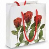 Promotional Small-Wide Gloss Matt Paper Bags