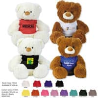 Promotional Coconut And Coco Teddy bear