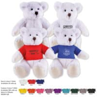 Promotional Frosty Teddy Bear